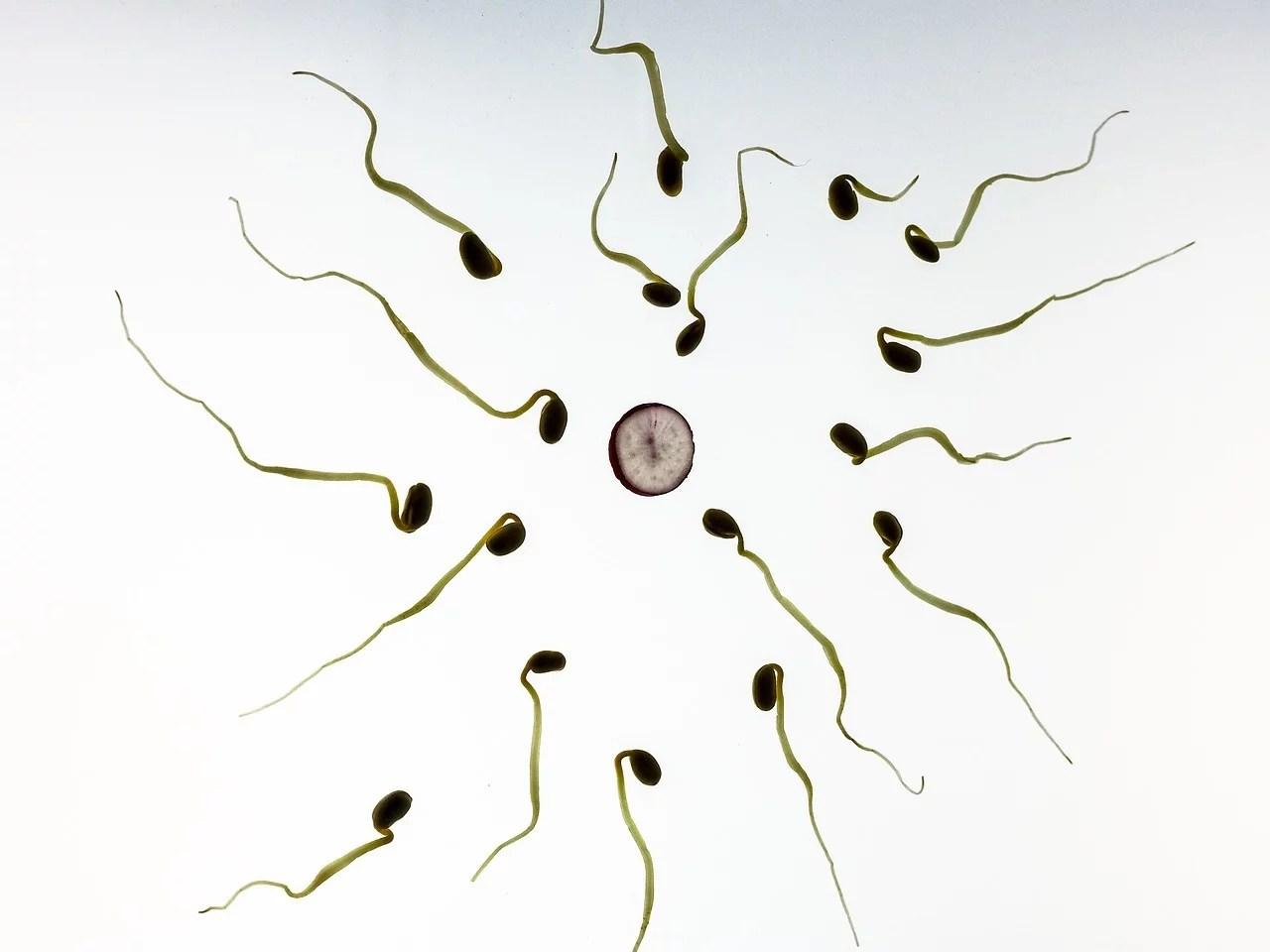 Loi IVG : être contre l'avortement est dans l'air du temps