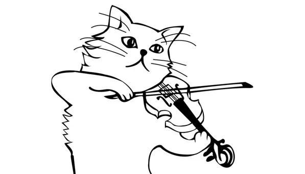 Les trop petits pas de chat de la Vivaldi