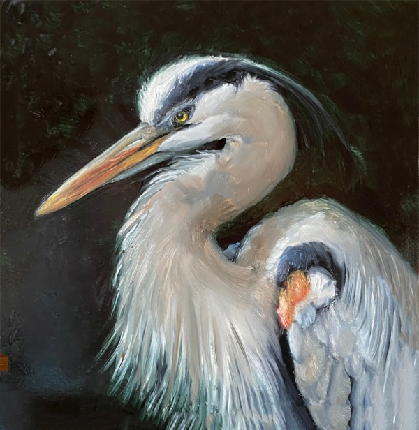 painting of a great blue heron by martha dodd