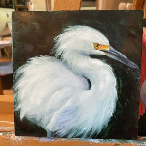 oil painting of soft snowy egret by martha dodd
