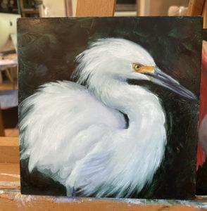 oil painting of soft snowy egret by martha dodd
