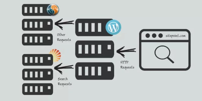 Solr Search with WordPress
