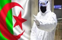 الجزائر88
