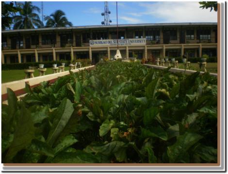 SSDU campus area