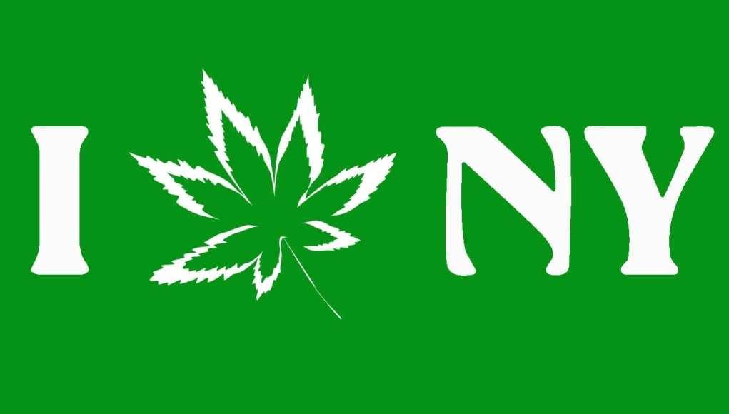 cannabis events new york 2019