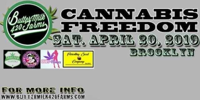 cannabis seminar freedom by buttermilk420farms brooklyn