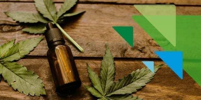 medical marijuana Katz Institute for Women's Health nyc