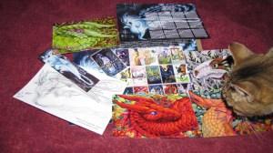 My Kickstarter packet full of Carla Morrow goodies. And Heldig kitty.