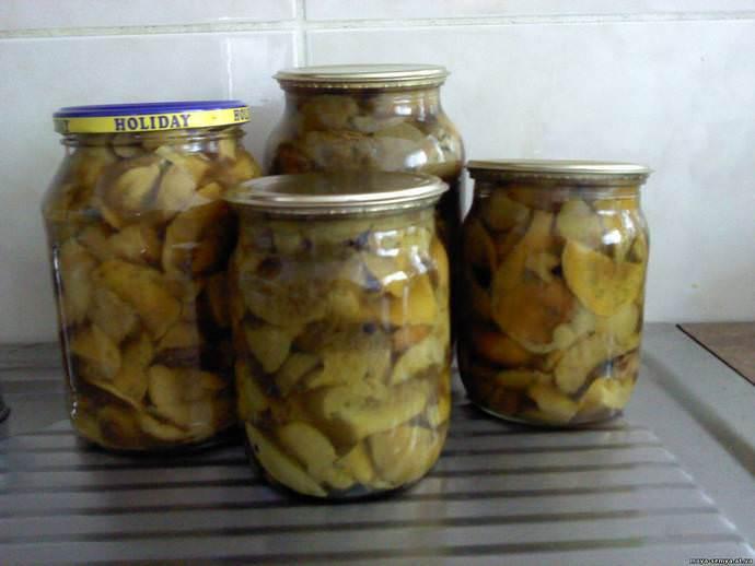 Как приготовить грибы сыроежки жареные с картошкой