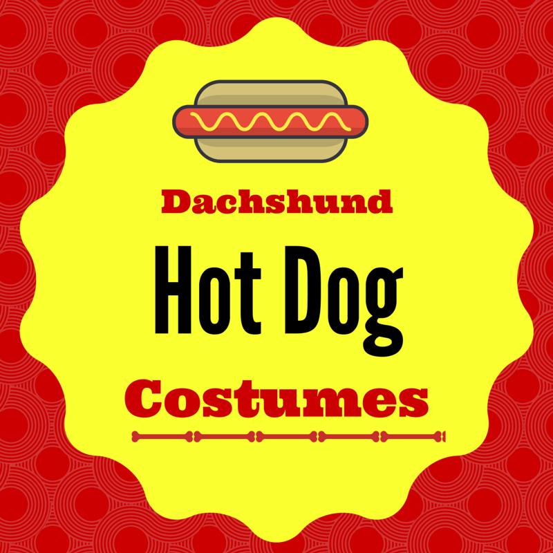 Wiener Dog Hot Dog Costume for Halloween