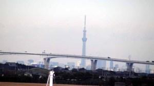 はるか遠くに東京スカイツリーが臨めた