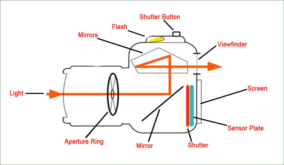 Basic Computer Parts Diagram