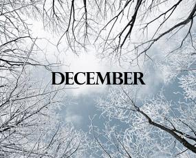 Report Dicembre 2013