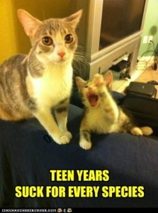 teenagers, parenting, development, puberty, kids, moms, dads, family, teens, stress, dad blogger