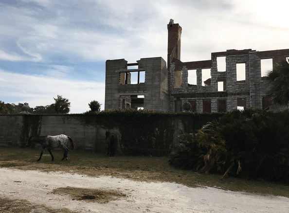 horses-by-ruins