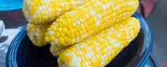 Sous Vide Buttered Corn on the Cob