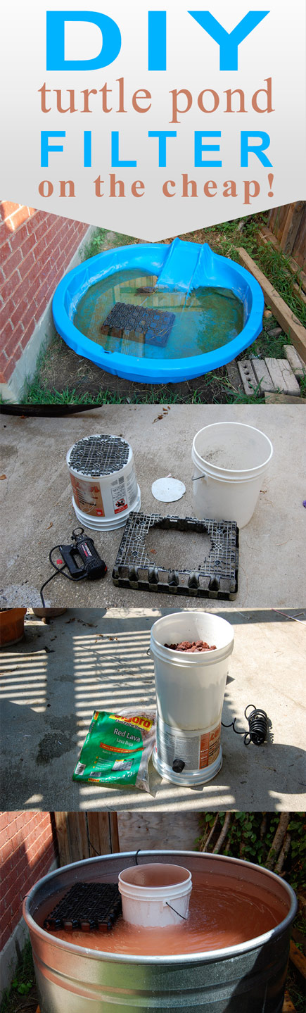 Pet turtle pond with diy filter daddykirbs farm for Diy pond filtration