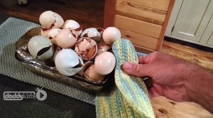 Save, Store, Use Eggshells in the Garden