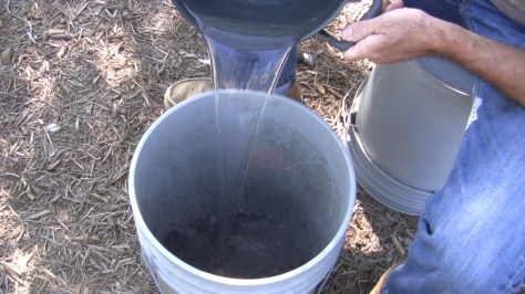 How To Make Compost Seed Starting Soil 05