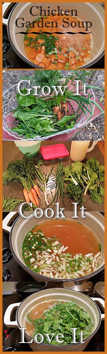 Chicken Garden Soup Pinterest Image