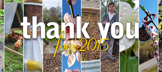 Homesteading Journey: Thank You for 2015