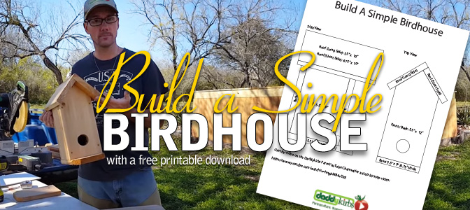 DIY Birdhouse Plans: Printable Download