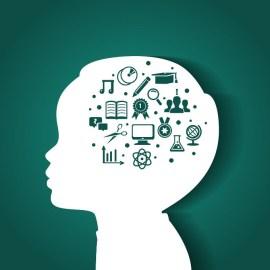 Мозг ребенка: Как родители могут помочь в здоровом развитии.