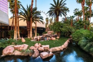 Flamingo Hotel Animal Habitat
