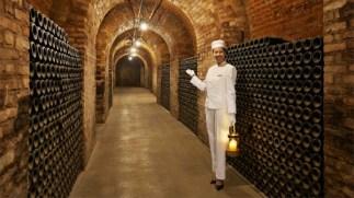 Peninsula-Paris-Academy-Visiting-the-Vines-6-copy-600x337