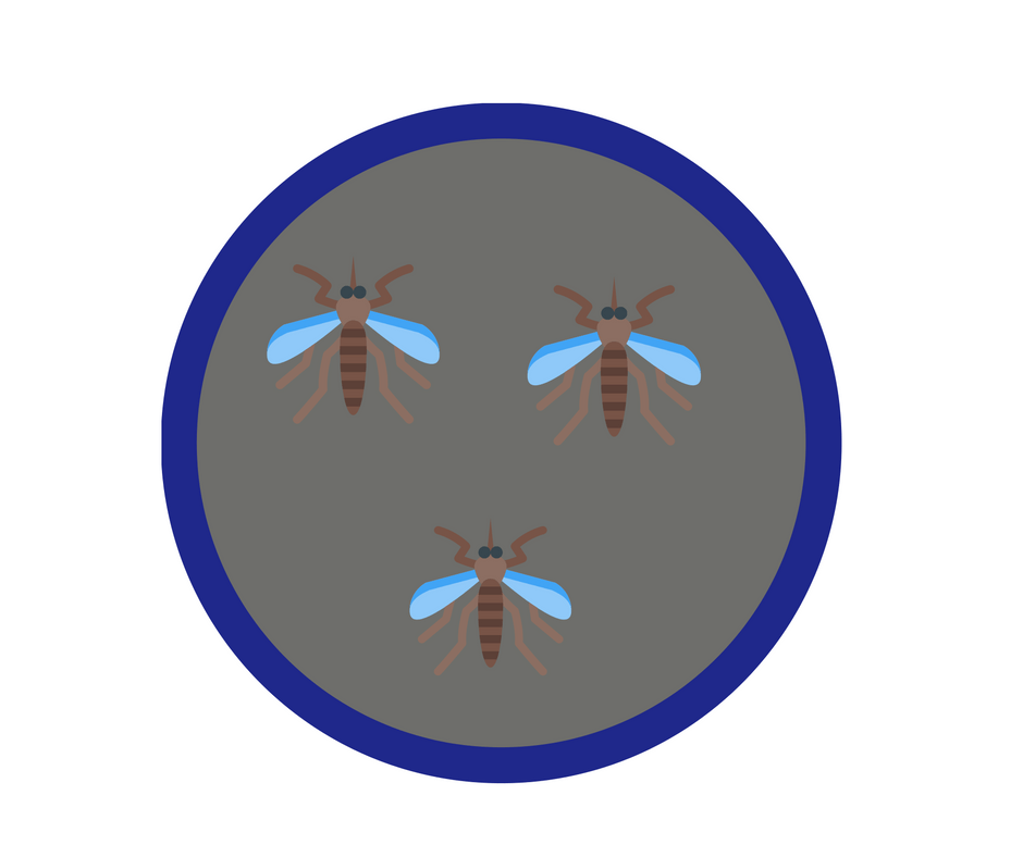 Image of a girl guide badge with three mosquitos