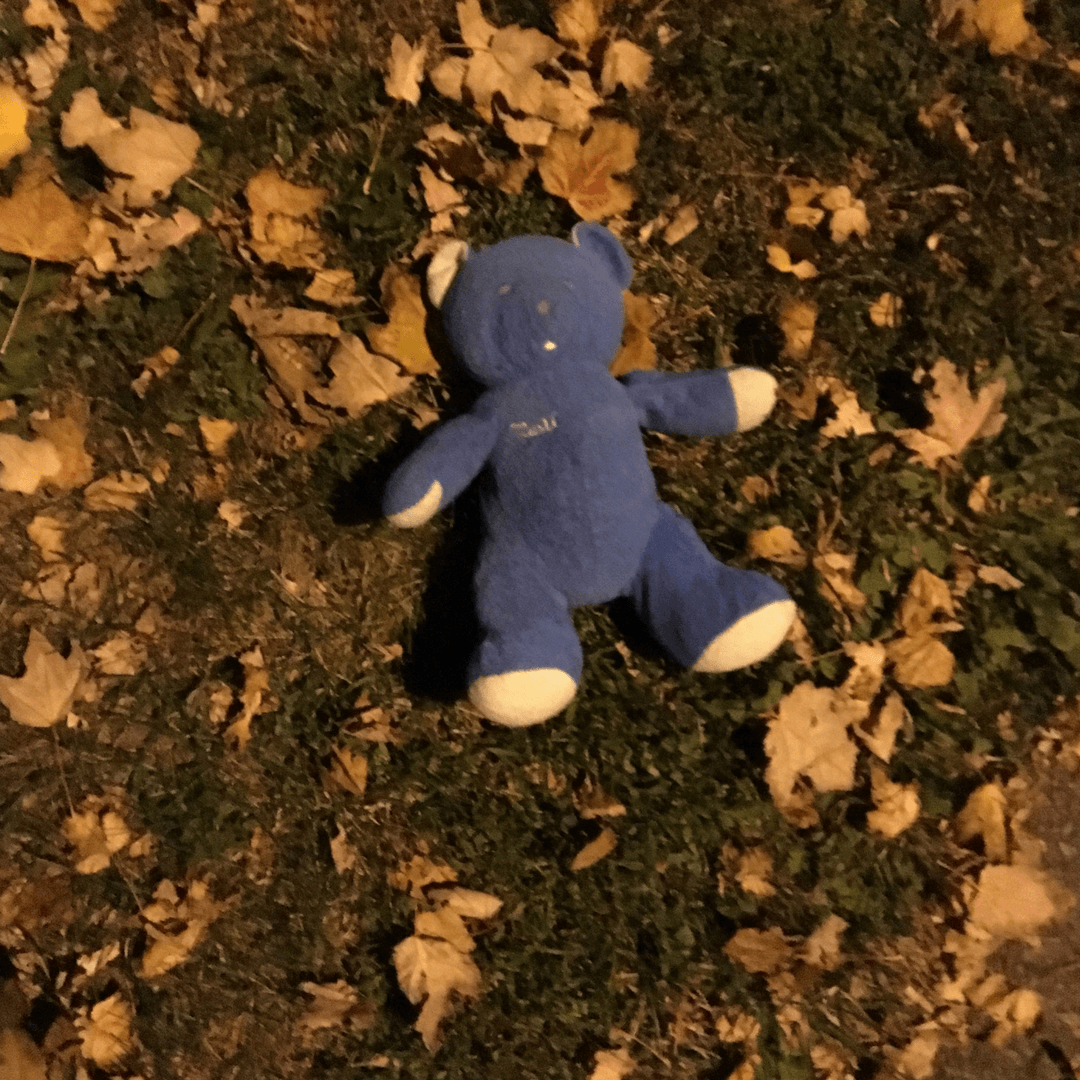 Image of blue bear lying in the grass