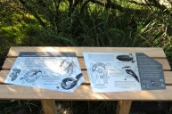 one of the new signs, this one about bush cherry, black snake and tools