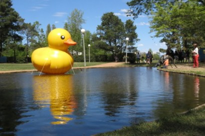 giant yellow duckie