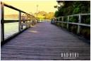 Mill Bay Boardwalk, NSW