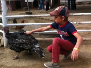 Zane Honea turkey