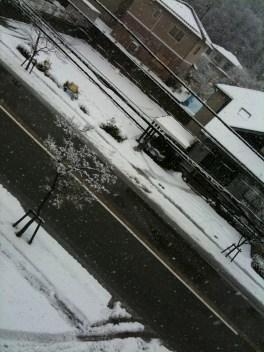 Parallelwelt Winter