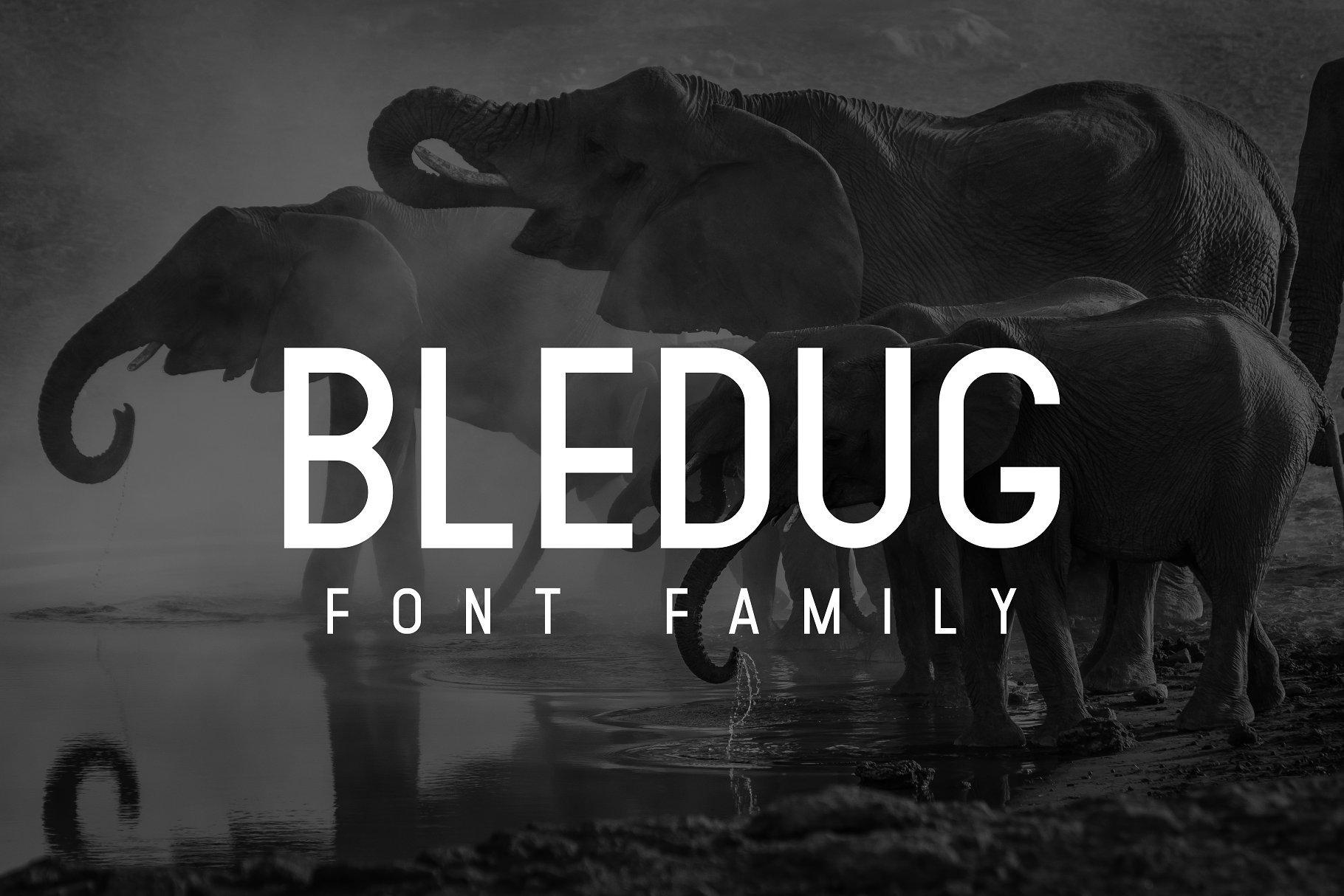 bledug-font-family