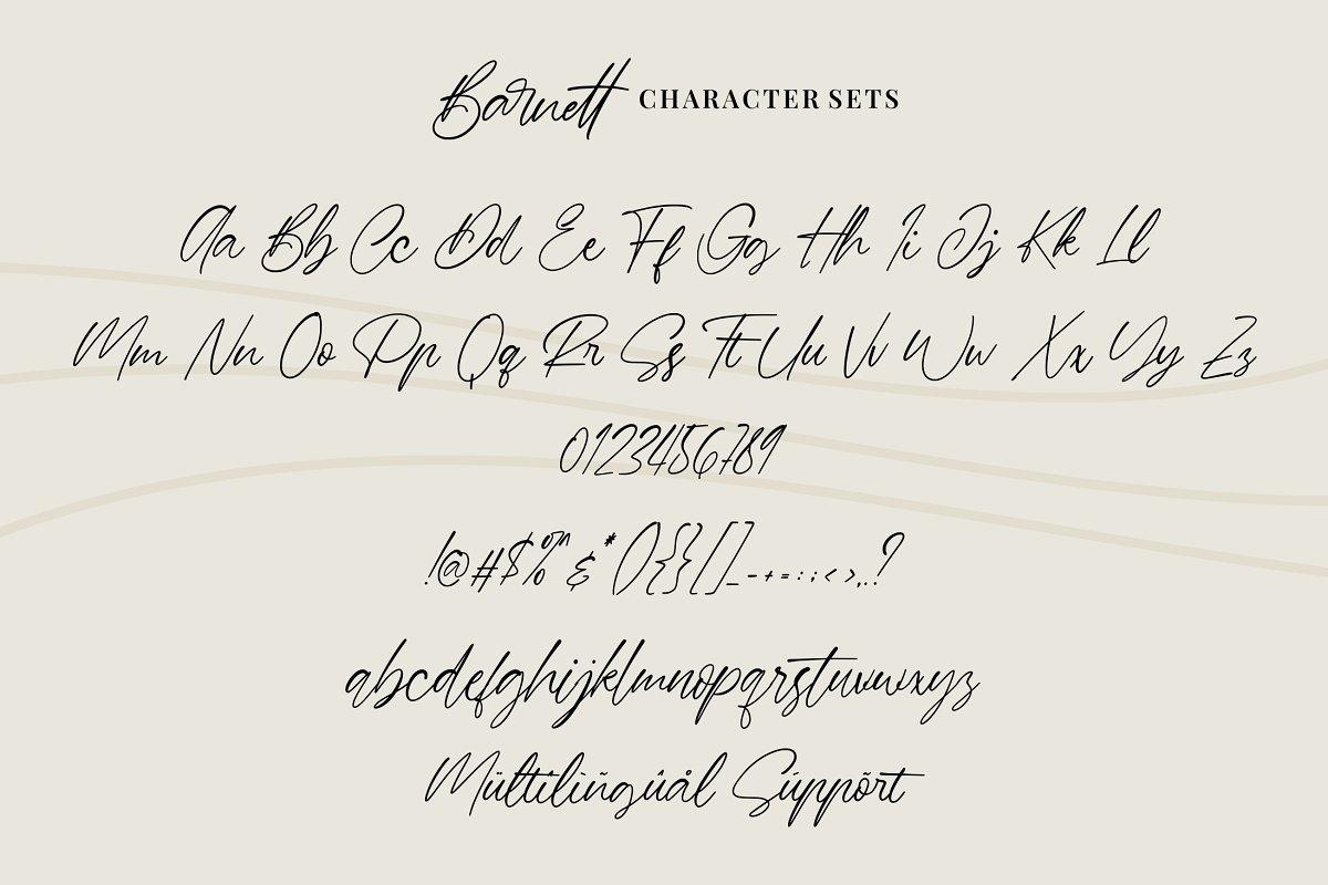 Barnett Signature Font03