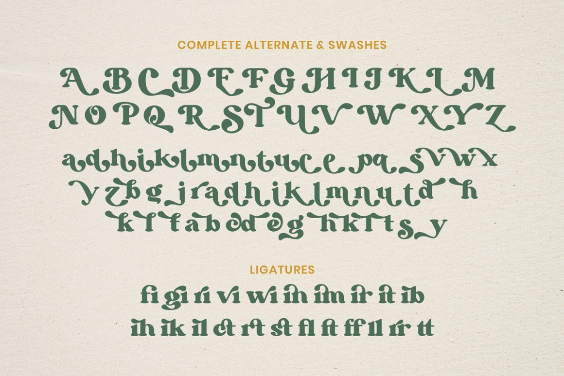 Bargie-Serif-Font-3