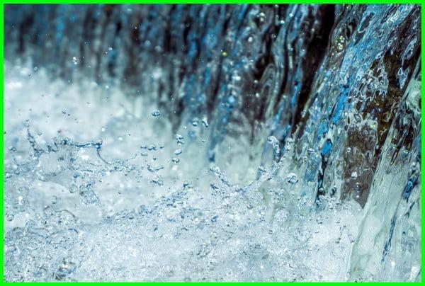 air tawar itu apa, air tawar adalah, air tawar adalah brainly, the air tawar, air tawar contohnya, air tawar fungsinya, air tawar freshwater, air tawar gunanya, air tawar kegunaan, air tawar maksud, air tawar beserta nama latinnya, meaning of air tawar, 3 contoh ekosistem air tawar, 6 jenis air tawar