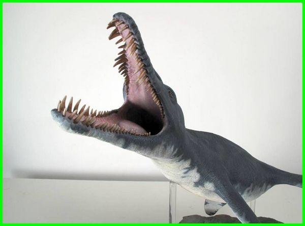 hewan laut prasejarah terbesar, hewan laut purba, hewan laut zaman purba, binatang laut purba, hewan laut zaman prasejarah, 5 hewan laut