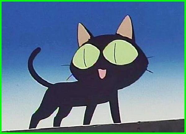 nama karakter anime kucing, nama kucing yang ada di anime, nama kucing di anime, nama nama kucing di anime