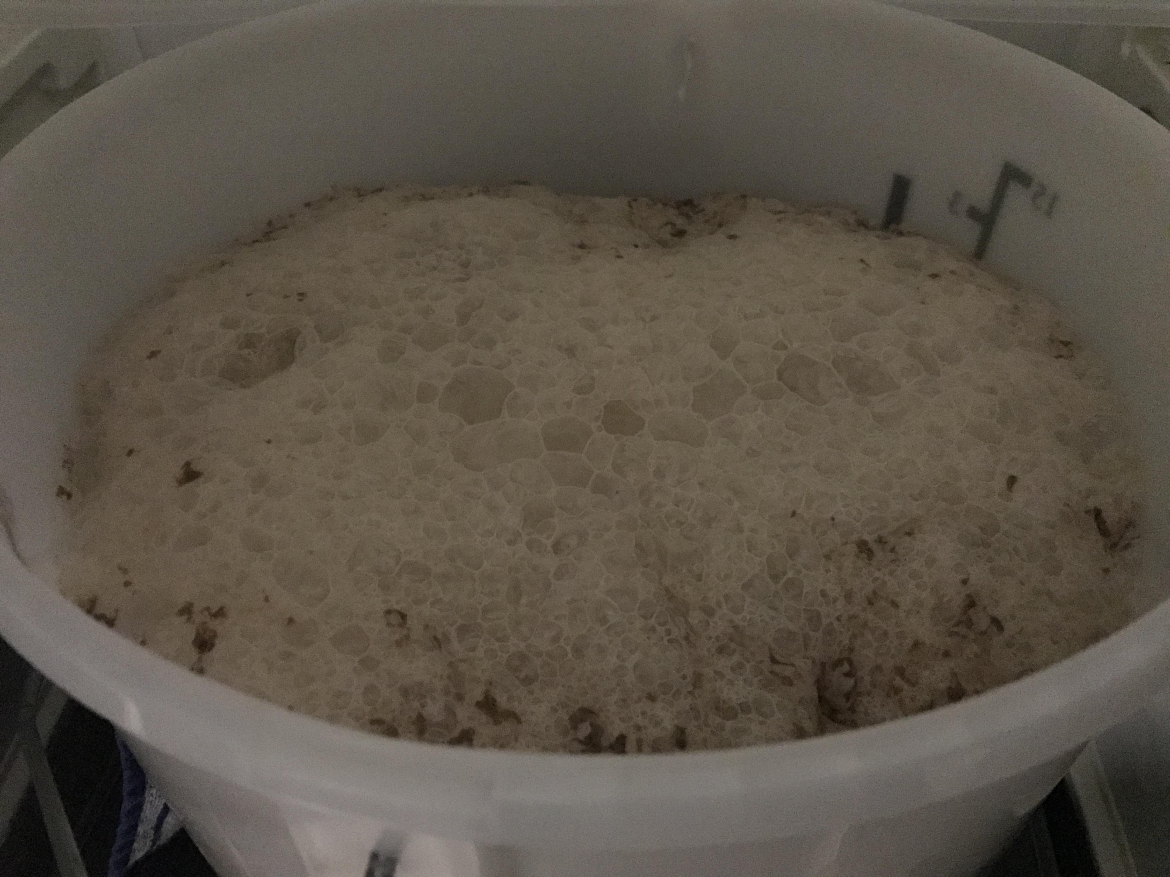 German Weiss – The Wurst Wheat – Weissbier (10 A)