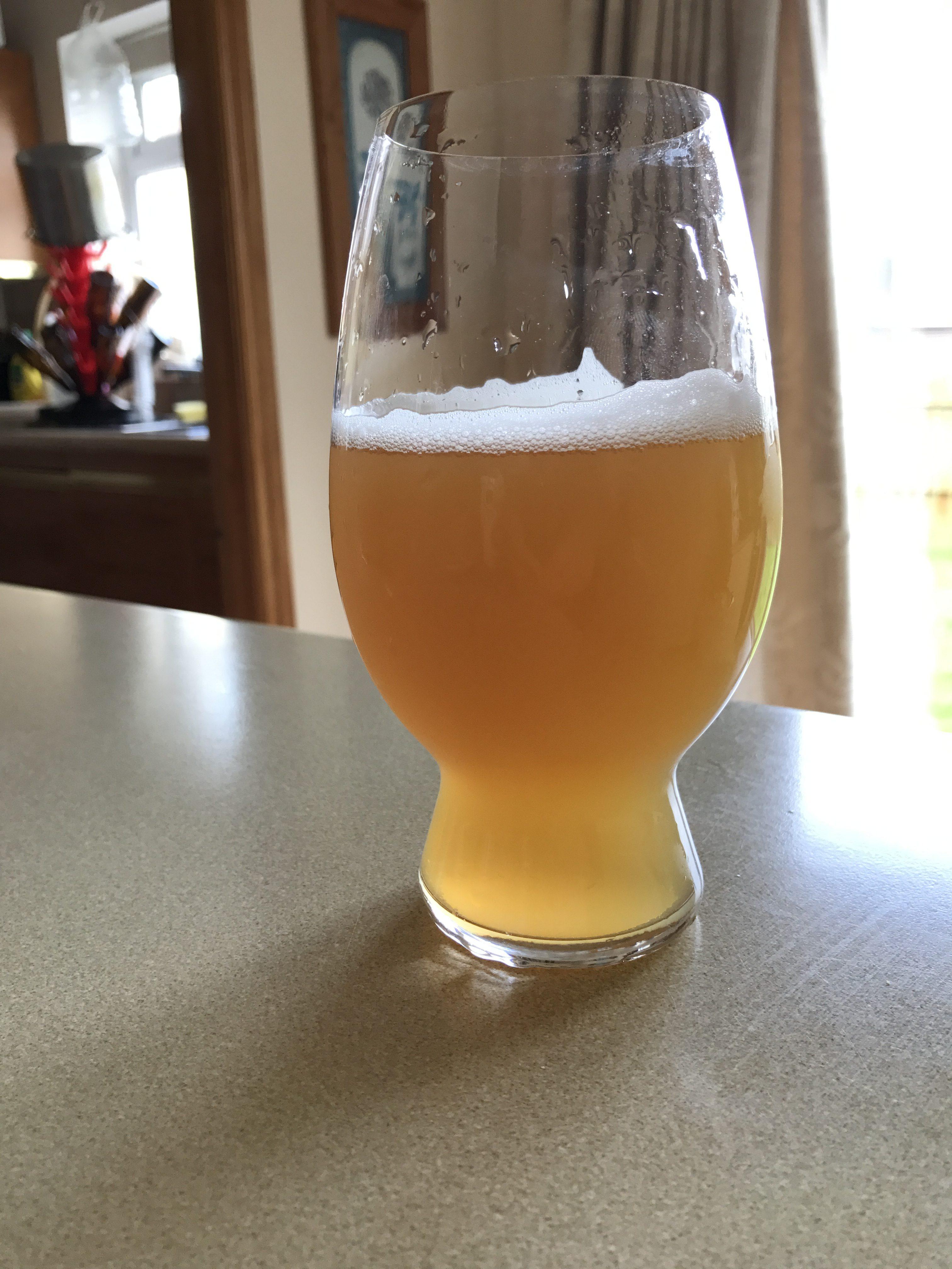Grapefruit Pale Ale 2017 – American Pale Ale (18 B)