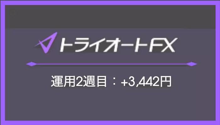 トライオートFX 2週目