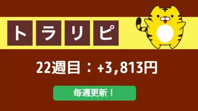 traprepertresult - 【トラリピ】22週目:運用実績は+3,813円でした!This is 不労所得