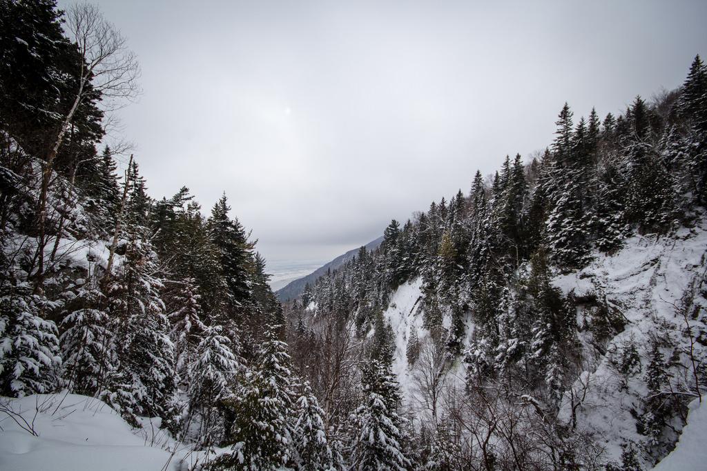Le Saint Laurent caché derrière les collines enneigées.