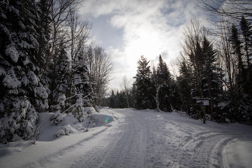 Chemin enneigé en bord de forêt sur le Sentier des Caps.