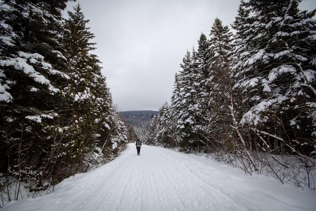 Touriste sur le chemin enneigé du Sentier des Caps.