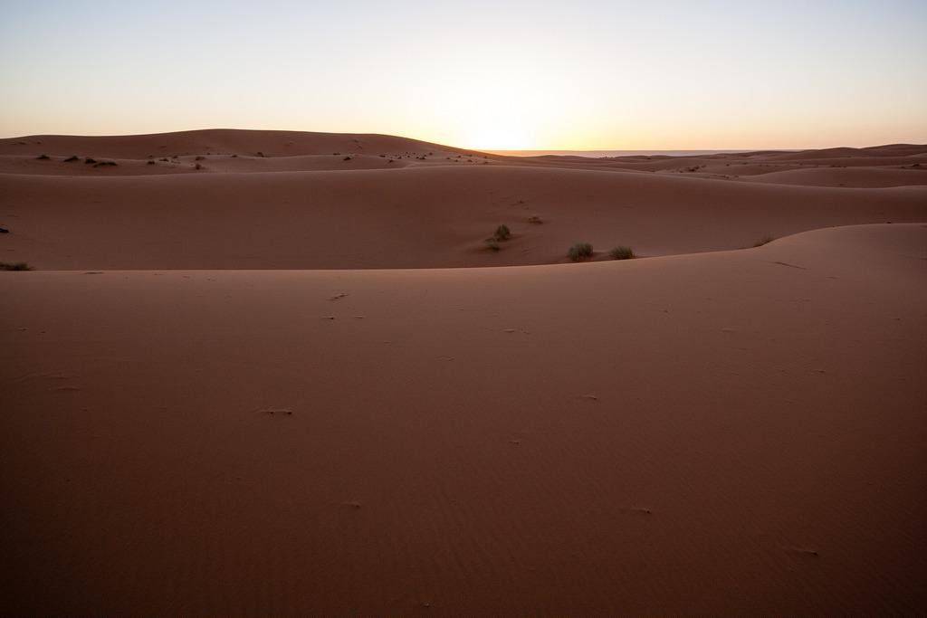 Levé de soleil, dans les dunes de Merzouga.